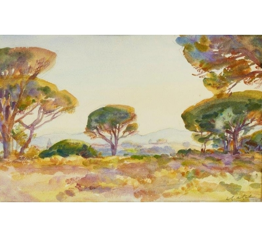 RoseberysWilfred Gabriel de Glehn RA,  British 1870-1951-  Pines of Sunset, Frejus;  watercolour over pencil, signed in charcoal, 32x50cm (ARR)  Exhibited: Goupil Salon, according to the label attached to the reverse of the frame Provenance: the artist's estate; Jonathan Green, Esq., London; private collection since the 1990s