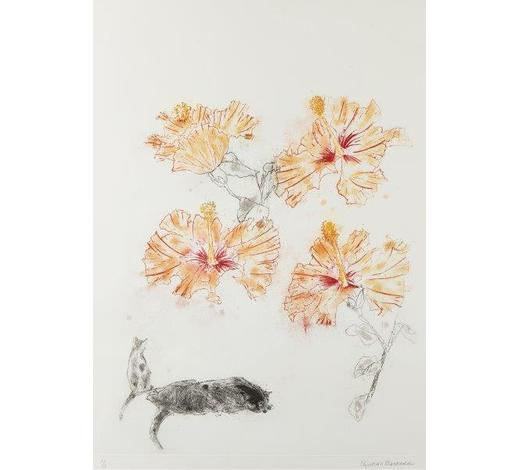 RoseberysDame Elizabeth Blackadder DBE RA RSA,  Scottish b.1931-   Hibiscus & Cats, 1985;   etching in colours on wove, signed and numbered 47/50 in pencil, published by Glasgow Print Studio, plate 61x45cm (ARR)