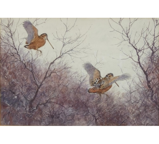 Revere AuctionsAiden Lassell Ripley Watercolor Painting of Woodcocks
